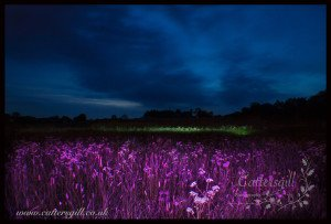 """Rowley Fields Lightpainting"" by local Specialist Newborn Photographer Lisa Cattersgill"""